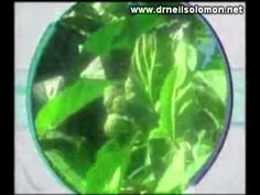 Tahitian Noni on the Discovery Channel - Today's Health - Part I.