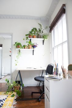 Plants above the desk rest on ikea shelves, one of lee& proudest d Shelves Above Desk, Ikea Shelves, Floating Shelves, Decorating Small Spaces, Decorating Blogs, Decorating Your Home, Couple Room, Apartment Living, Studio Apartment