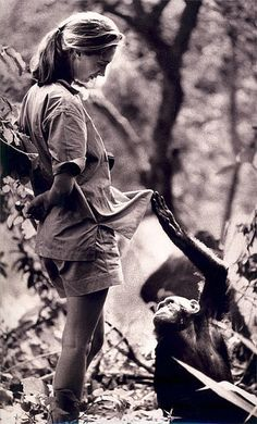 I wanted to grow up and work with Jane Goodall... one of my hero's...