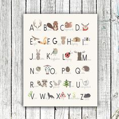 The woodland nursery theme is so cute. Here are 13 ideas for a woodland nursery theme for your baby girl. We have rustic woodland decor and girly decor. Woodland Animal Nursery, Woodland Theme, Woodland Nursery Decor, Woodland Animals, Woodland Forest, Whimsical Owl, Rustic Nursery, Vintage Nursery, Baby Boy Rooms