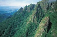 Mata Atlantica - Brazil's Atlantic Forest