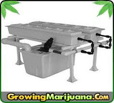 Sanitation And Sterilization Of Your Hydroponic System  http://www.growingmarijuana.com/hydroponic-system-sanitation.php