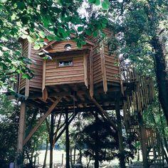 Magical hideaway #nature #treehouse #treecabin #woodwork #instaparadise #woods #france #vacation #summer #beauty #secretspot