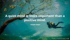 Quotes of Deepak Chopra Deepak Chopra, Meditation Quotes, Positive Mind, Mindfulness, Positivity, Movie Posters, Film Poster, Consciousness, Billboard