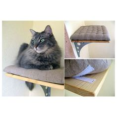 Cat Bed DIY Projects - The Cottage Market
