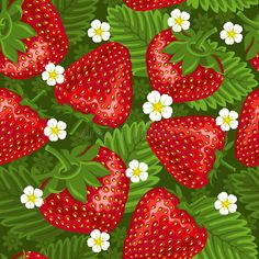 Illustration about Excellent seamless pattern with with strawberry and leaves on green background. Illustration of berry, decorative, food - 17967665 Strawberry Bars, Strawberry Kitchen, Strawberry Fields, Strawberry Pretzel, Strawberry Delight, Strawberry Shortcake, Strawberry Pictures, Strawberry Background, Strawberry Decorations