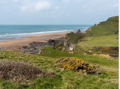 My favourite beach, also it has a National Trust car park Dogs are banned from April to September. Devon Holidays, Devon Cottages, Outside Dogs, Dog Friendly Holidays, Devon And Cornwall, Stone Barns, Farm Stay, Cottage Design, National Trust