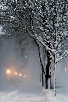 Nieve en sus ojos!!
