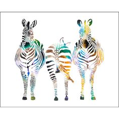 Watercolor Painting Zebras 8 x 10 Archival Art Print Zebra Multicolor... ($25) ❤ liked on Polyvore featuring home, home decor, wall art, matte painting, watercolor wall art, zebra wall art, watercolor painting and zebra painting
