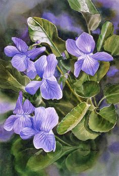 Blue Dog Violets Painting by Sharon Freeman - Blue Dog Violets Fine Art Prints and Posters for Sale