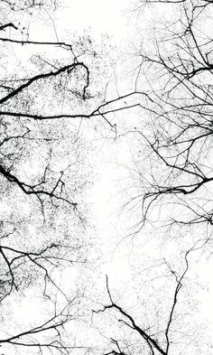 graphic black & white