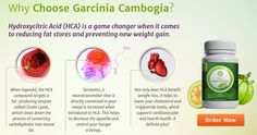 Pure Asian Garcinia Review – How To Lose Weight Without Changing Your Favorite Diet