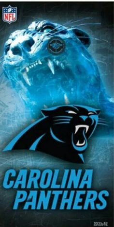 Italian Carolina Panthers hack into wireless security systems - disarming  and taking control of homeowners  61a68d79d