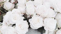 . Capricorn Moon, Diamond Wall, Pretty Pictures, Kara, Header, Oc, Classy, Twitter, Flowers