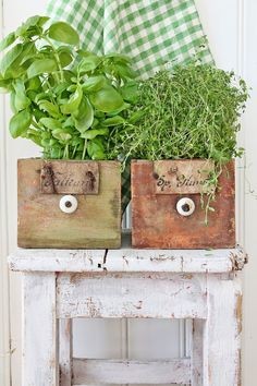 Herbs ( by Vibeke Design ) Herb Garden, Home And Garden, Vibeke Design, Shabby Chic, Old Boxes, Growing Herbs, Shades Of Green, Spring Flowers, Garden Inspiration