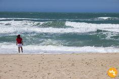 Conheça as 7 MELHORES PRAIAS do Ceará! Cumbuco, Praia do Futuro, Porto das Dunas, Águas Belas, Morro Branco, Praia das Fontes e Canoa Quebrada.  http://www.marolacomcarambola.com.br/7-praias-para-conhecer-em-fortaleza-e-seus-arredores/