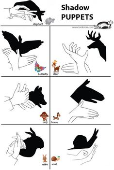 Creative Crafts to Keep your Kids Busy - Page 4 Puppets For Kids, Hand Puppets, Shadow Art, Shadow Play, Shadow Puppets With Hands, Fun Crafts, Crafts For Kids, Hand Shadows, Shadow Theatre