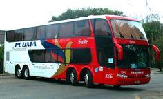 PLUMA - Empresa brasileira de transporte rodoviário de passageiros que faz viagens internacionais para a Argentina, Paraguai e Chile.