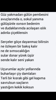 Güz yakmadan gülün pembesini Ahmet Telli