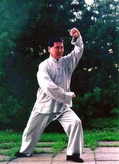 Yang Style Tai Chi Chuan,   Strike Tiger Left,   Grand Master Tung Kai Ying    http://www.tungkaiying.com/master.shtml  #taichi #martialarts #tungkaiying #yang