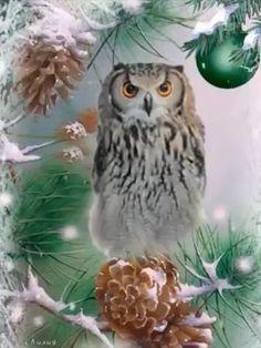 Holiday Iphone Wallpaper, Xmas Wallpaper, Christmas Owls, Christmas Greetings, Cute Owls Wallpaper, Pumpkin Wallpaper, Grim Reaper Art, Owl Tattoo Design, Snoopy Love