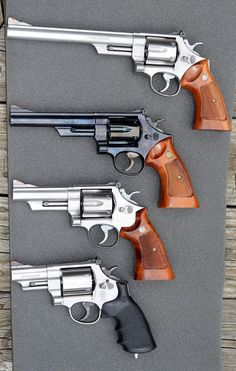 Model 29 or 629 -- which would you buy?