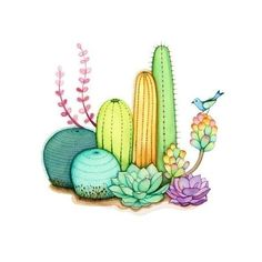 Watercolor painting, Wall art print, Cactus garden ($28) ❤ liked on Polyvore featuring home, home decor, wall art, fillers, backgrounds, drawings, cacti, illustrations, matte painting and watercolor wall art