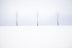 Hungarian born Akos Major, currently residing in Vienna, is a freelance graphic designer and amateur photographer. However, there is nothing amateur about this stunning photographic series entitled Lumen. Minimal Photography, Monochrome Photography, Creative Photography, White Photography, Landscape Photos, Landscape Photography, Nature Photography, Winter Landscape, Freelance Graphic Design