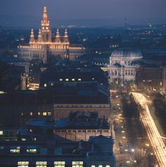 11-©WienTourismus-F-3.-The-Ring-Boulevard-over-the-roofs-of-Vienna-990x1000.jpg (990×1000)