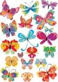 many different multicolored butterflies - vector stock photography