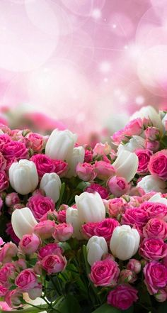 50 Ideas spring wallpaper iphone backgrounds nature pink flowers for 2019 Beautiful Flowers Wallpapers, Beautiful Rose Flowers, Flowers Nature, Amazing Flowers, Pretty Wallpapers, Pretty Flowers, Desktop Wallpapers, Spring Wallpaper, Flowery Wallpaper