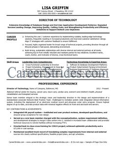 ExecutiveLevel Information Technology Resume  Resume Examples