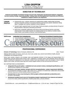 it director resume sample example - It Director Resume