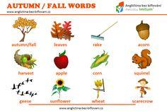 Dnes je první podzimní den, proto vám přinášíme několik slov, která se s tímto ročním obdobím pojí. #season #autumn #fall