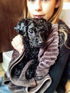 Benson's first bath