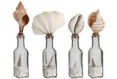 Shell Bottles, Asst. of 4 on OneKingsLane.com