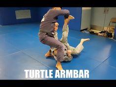 Turtle   Armbar by Professor Kris Kim, Seoul, Korea