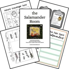 Salamander Room Lapbook Lessons FREE Printables