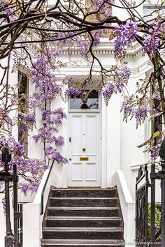 London Walking Tours - 23 Free Self-Guided Walks in London A white front door with a purple spring wisteria arch on a house in Kensington, London. Front Door Entrance, Exterior Front Doors, White Front Doors, Exterior Design, Interior And Exterior, Walks In London, Kensington London, London Spring, Spring City