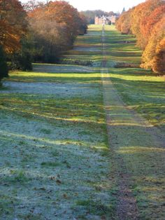vwcampervan-aldridge:  Late Autumn Frost on the Avenue to Chillington Hall, Staffordshire, England All Original Photography by http://vwcampervan-aldridge.tumblr.com