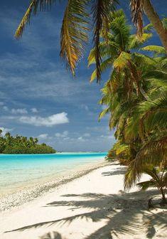 Beach, ocean and Palms  what else do ya need