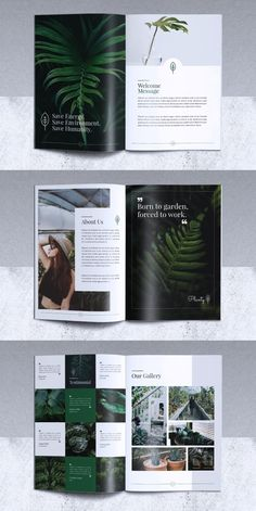 Brochure Templates for Adobe InDesign - Visual Arts & Identity Indesign Templates, Adobe Indesign, Brochure Template, Company Brochure Design, Booklet Design, Brochure Layout, Corporate Brochure, Modern Tropical, Visual Arts