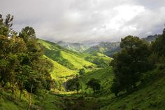 Along the Forgotten Highway, New Zealand