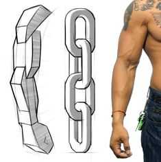 The arm has a simple chain design and the forms interlock down the arm. Learn more about arm anatomy in the premium course - proko.com/anatomy