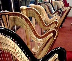 Harp showrooms. It's like walking into a candy store.