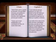 61 - BIBLIA HABLADA - 2 PEDRO (RV-NT)