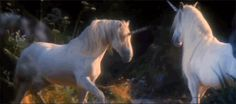 Which Mythical Creature Are You? Quiz on Buzzfeed ¦ I already knew I was a unicorn, but here be the proof!