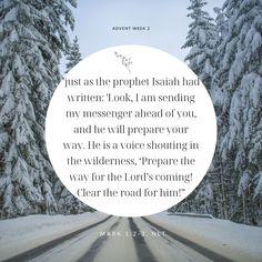 Bible Words, Bible Verses, Christmas Scripture, Prophet Isaiah, New Living Translation, Verse Of The Day, Bible Stories, Wilderness, Advent