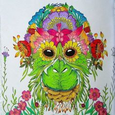 #exotickyprales #exotischerurwald #coloringforadults #marcoraffine