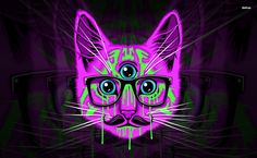 Psychedelic hipster cat HD Wallpaper